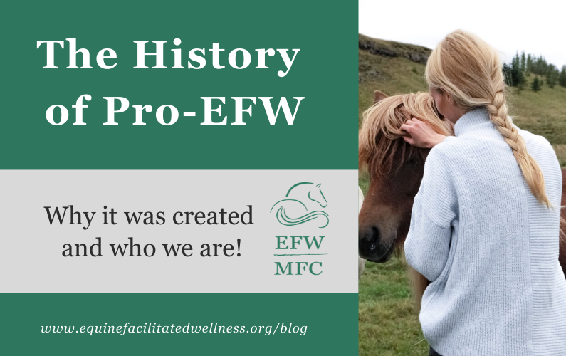 The History of Pro-EFW: Why it was created and who we are!